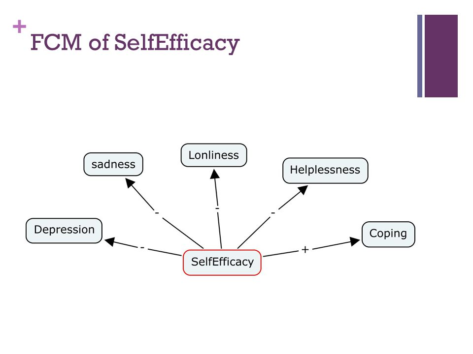+ FCM of SelfEfficacy