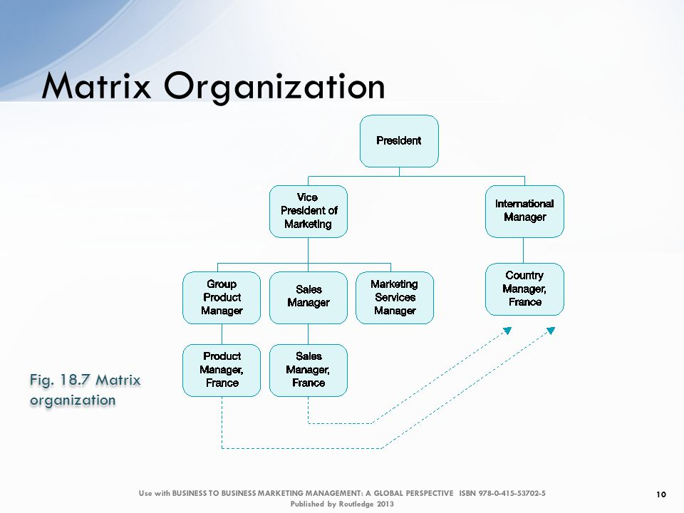 Matrix Organization 10 Fig.