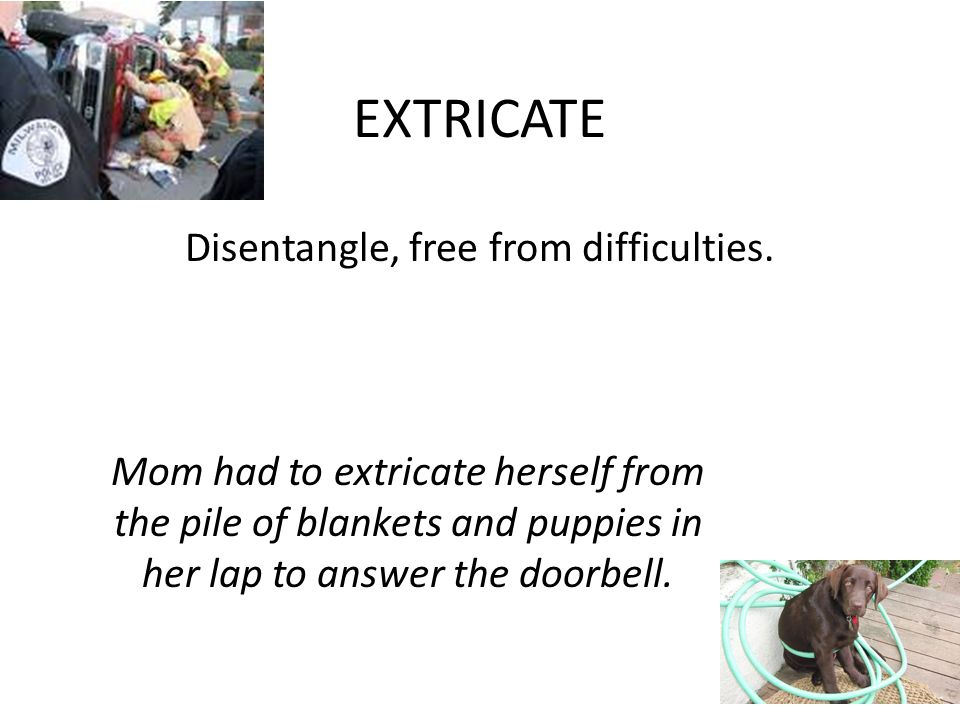 EXTRICATE Disentangle, free from difficulties. Mom had to extricate herself from the pile of blankets and puppies in her lap to answer the doorbell.