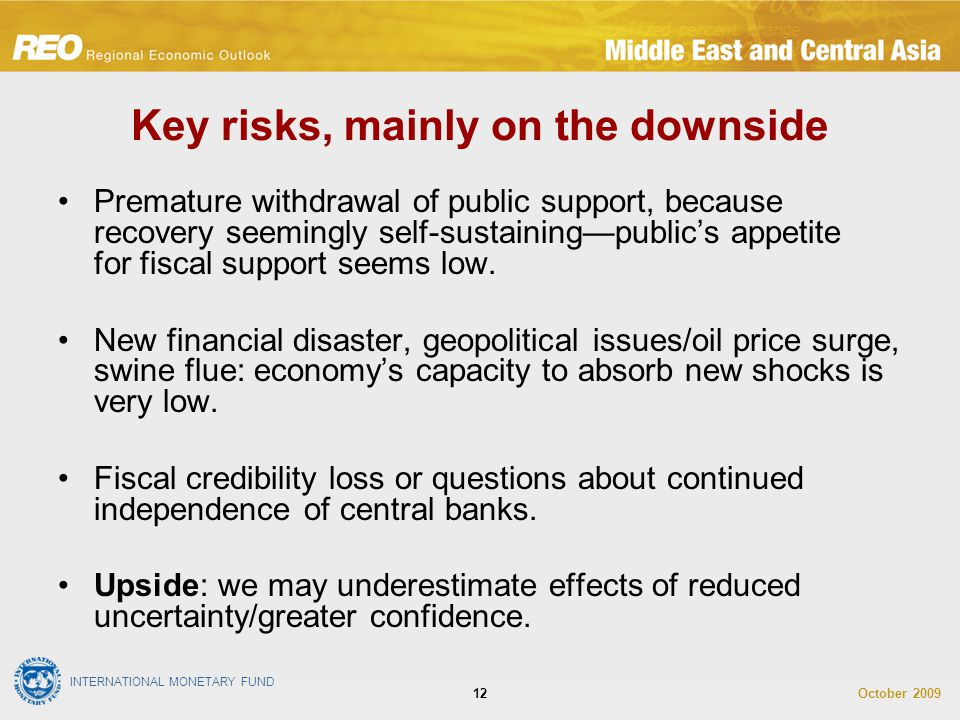 INTERNATIONAL MONETARY FUND October 200912 Key risks, mainly on the downside Premature withdrawal of public support, because recovery seemingly self-sustaining—public's appetite for fiscal support seems low.