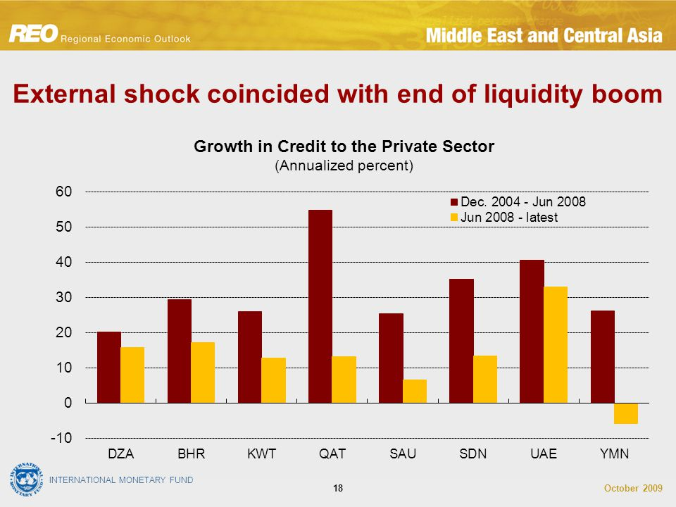 INTERNATIONAL MONETARY FUND October 200918 External shock coincided with end of liquidity boom Growth in Credit to the Private Sector (Annualized percent)