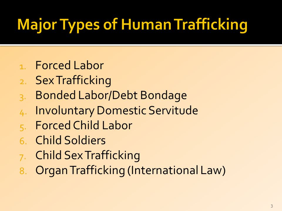 1. Forced Labor 2. Sex Trafficking 3. Bonded Labor/Debt Bondage 4. Involuntary Domestic Servitude 5. Forced Child Labor 6. Child Soldiers 7. Child Sex