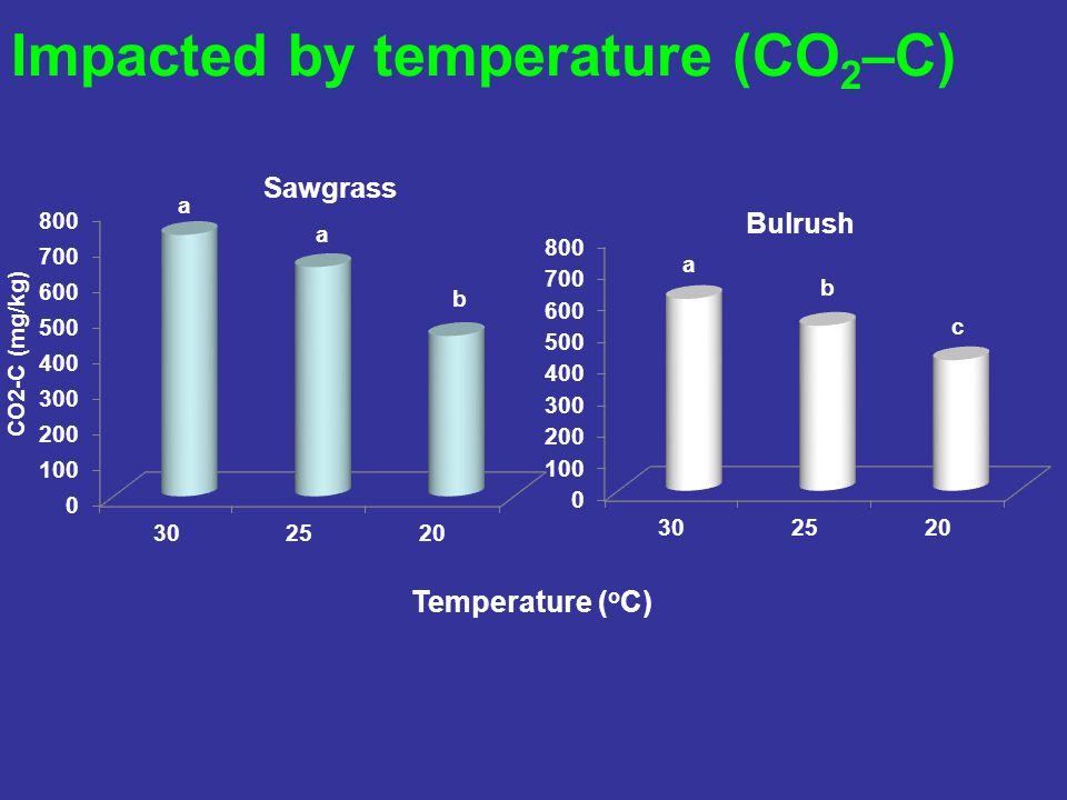 Impacted by temperature (CO 2 –C) Temperature ( o C)