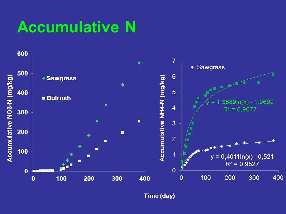 Accumulative N Time (day)