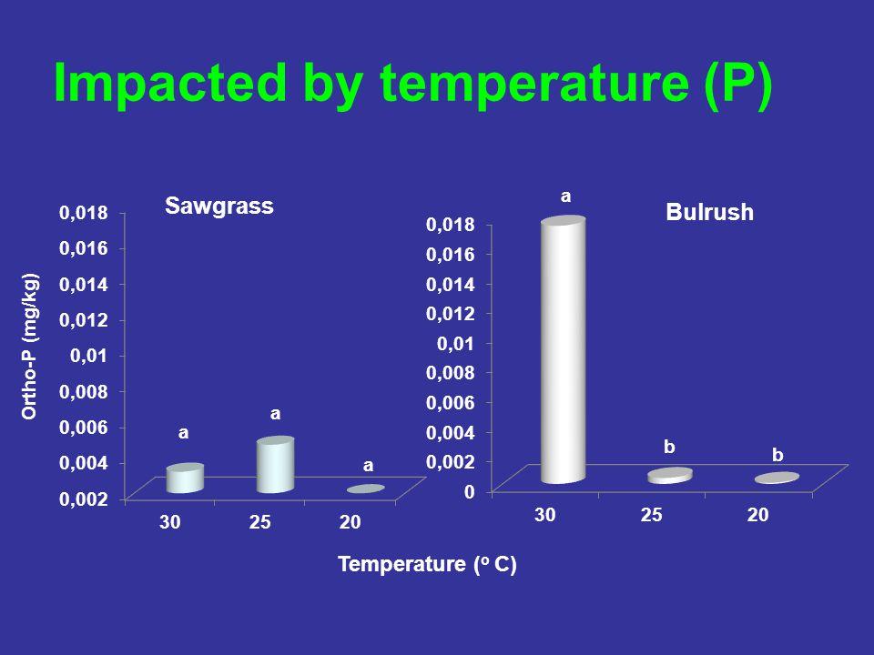 Impacted by temperature (P) Temperature ( o C)
