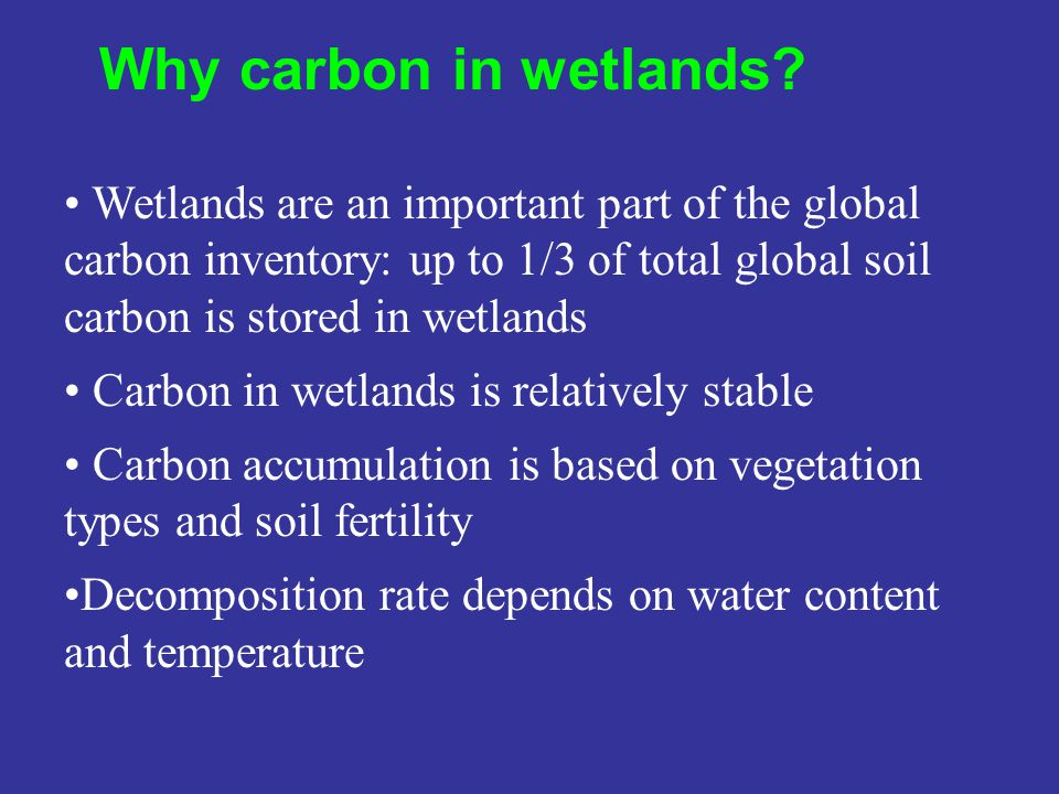 Wetlands are an important part of the global carbon inventory: up to 1/3 of total global soil carbon is stored in wetlands Carbon in wetlands is relat
