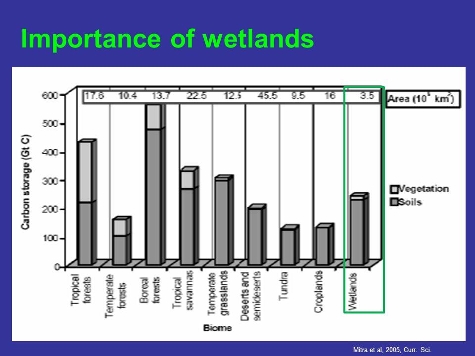 Importance of wetlands Mitra et al, 2005, Curr. Sci.