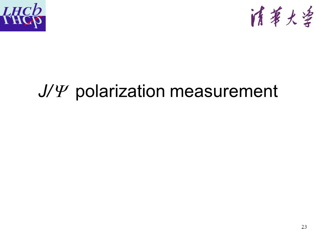 J/  polarization measurement 23