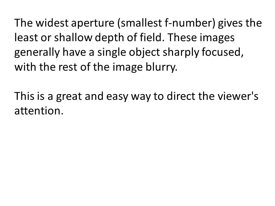 The widest aperture (smallest f-number) gives the least or shallow depth of field.