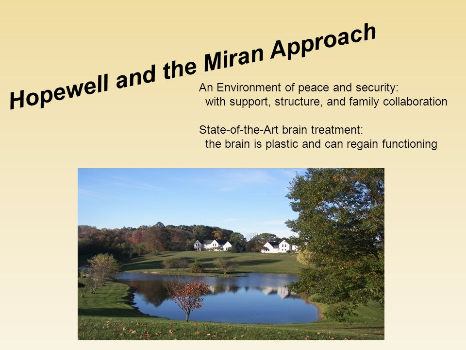 An Environment of peace and security: with support, structure, and family collaboration State-of-the-Art brain treatment: the brain is plastic and can regain functioning Hopewell and the Miran Approach