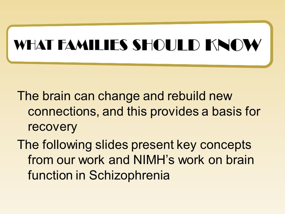 Time-Line Development of the Miran's Treatment 1982: Right Brain/Left Brain Models lead to a Homeostatic Brain Model 1989: Adapting the NYU Rusk and the Recanati Institute's Neuropsychological Therapeutic Community Model (a brain injury treatment) 2000: Grant from NYS Office of Mental Health 2000- present: Treatment sites at- FEGS (Brooklyn), Jaffa Community Mental Health Center (Israel) and Hudson River Psychiatric Center (NY) 2006-present: Collaboration with Hopewell (OH)