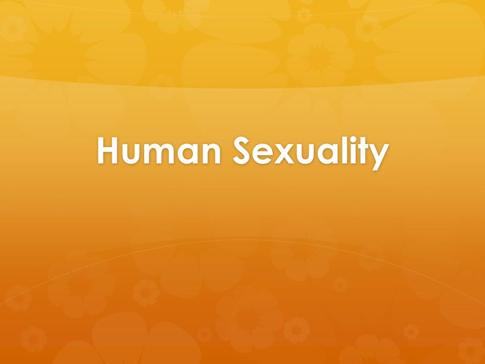 Sexual Stimuli  Visual stimuli  Men more aroused than women  Nature of video (audience)  Less important for women  Olfactory stimuli