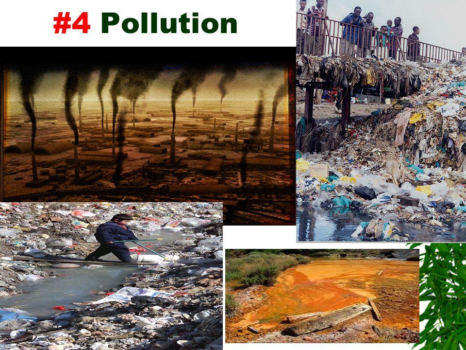#4 Pollution