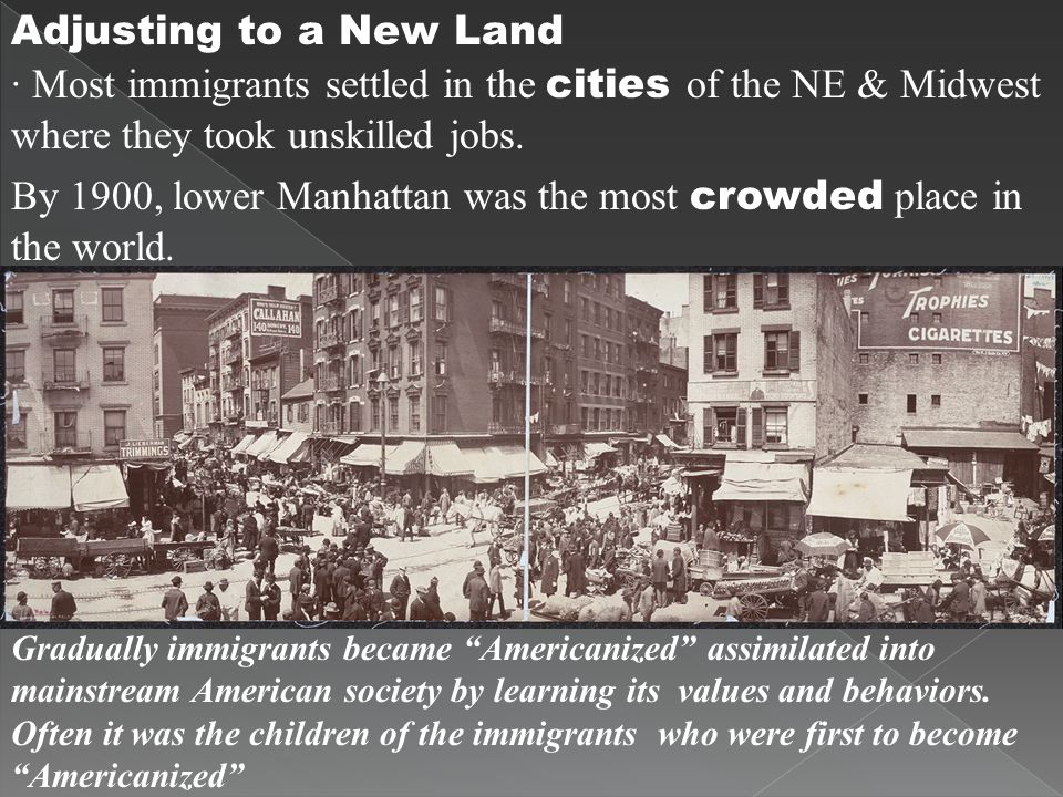 Adjusting to a New Land · Most immigrants settled in the cities of the NE & Midwest where they took unskilled jobs. By 1900, lower Manhattan was the m