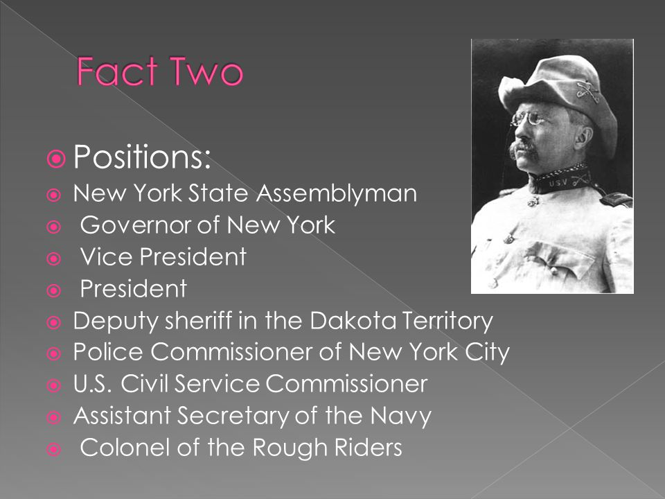  Positions:  New York State Assemblyman  Governor of New York  Vice President  President  Deputy sheriff in the Dakota Territory  Police Commissioner of New York City  U.S.