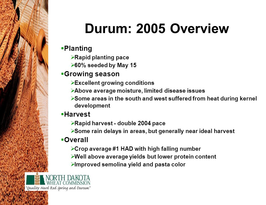 Durum: 2005 Overview  Planting  Rapid planting pace  60% seeded by May 15  Growing season  Excellent growing conditions  Above average moisture, limited disease issues  Some areas in the south and west suffered from heat during kernel development  Harvest  Rapid harvest - double 2004 pace  Some rain delays in areas, but generally near ideal harvest  Overall  Crop average #1 HAD with high falling number  Well above average yields but lower protein content  Improved semolina yield and pasta color
