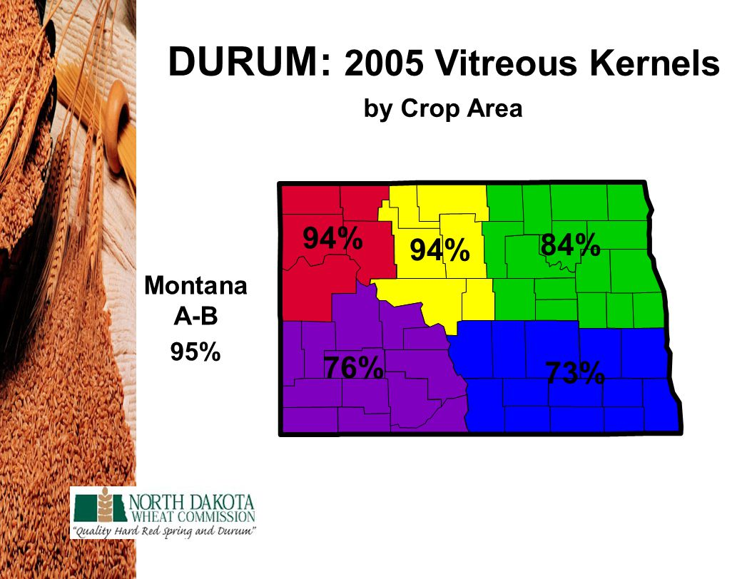DURUM: 2005 Vitreous Kernels by Crop Area 94% 84% 73% 76% Montana A-B 95%