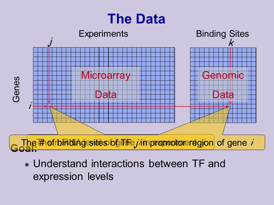 The Data Experiments Genes i j The mRNA level of gene i in experiment j Goal: l Understand interactions between TF and expression levels Binding Sites The # of binding sites of TF j in promotor region of gene i k Microarray Data Genomic Data
