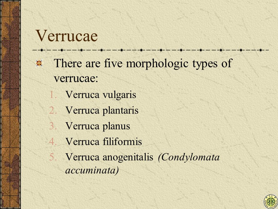 Verrucae There are five morphologic types of verrucae: 1.Verruca vulgaris 2.Verruca plantaris 3.Verruca planus 4.Verruca filiformis 5.Verruca anogenitalis (Condylomata accuminata)