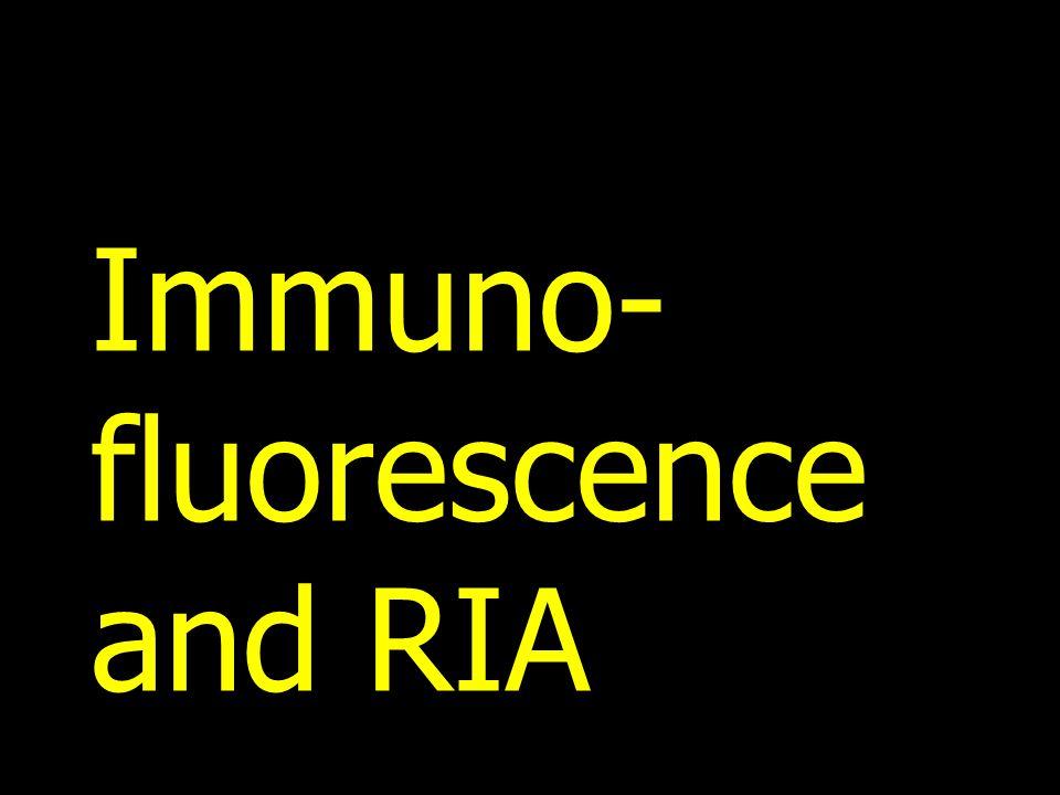 Immuno- fluorescence and RIA