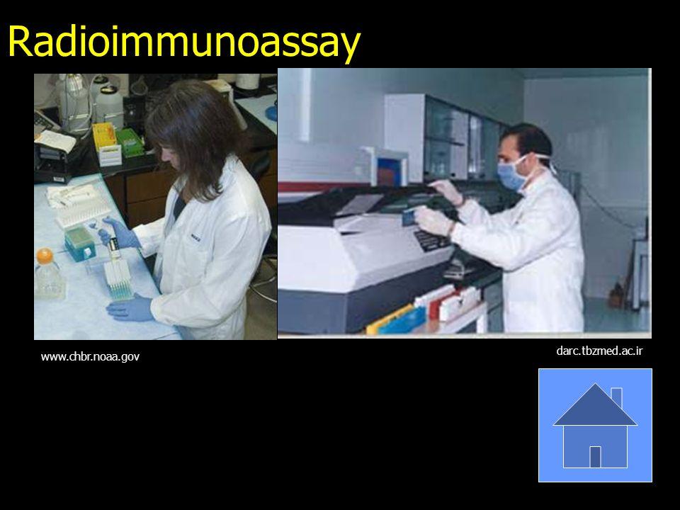 Radioimmunoassay www.chbr.noaa.gov darc.tbzmed.ac.ir