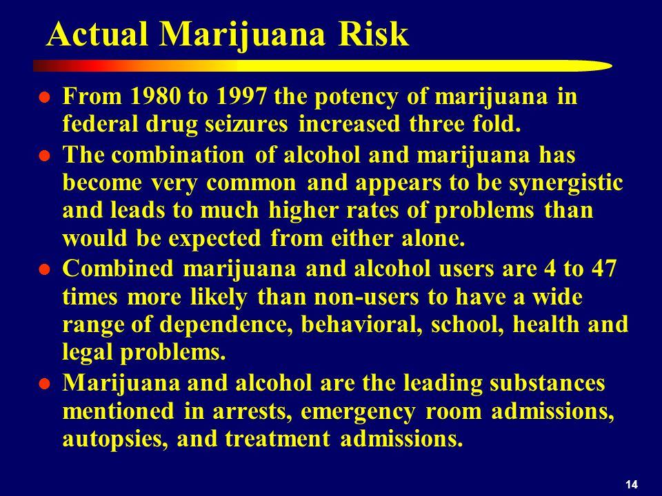 14 Actual Marijuana Risk From 1980 to 1997 the potency of marijuana in federal drug seizures increased three fold.
