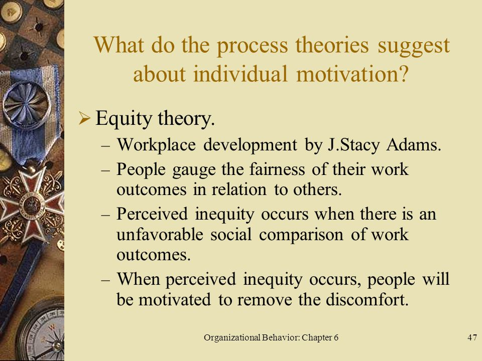 Organizational Behavior: Chapter 647 What do the process theories suggest about individual motivation?  Equity theory. – Workplace development by J.S