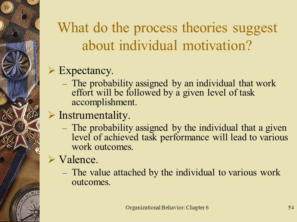 Organizational Behavior: Chapter 654 What do the process theories suggest about individual motivation?  Expectancy. – The probability assigned by an