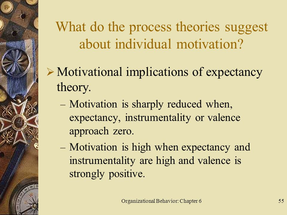 Organizational Behavior: Chapter 655 What do the process theories suggest about individual motivation?  Motivational implications of expectancy theor