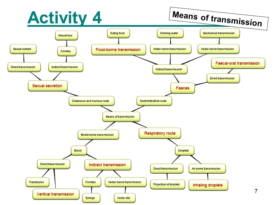 7 Activity 4 Means of transmission