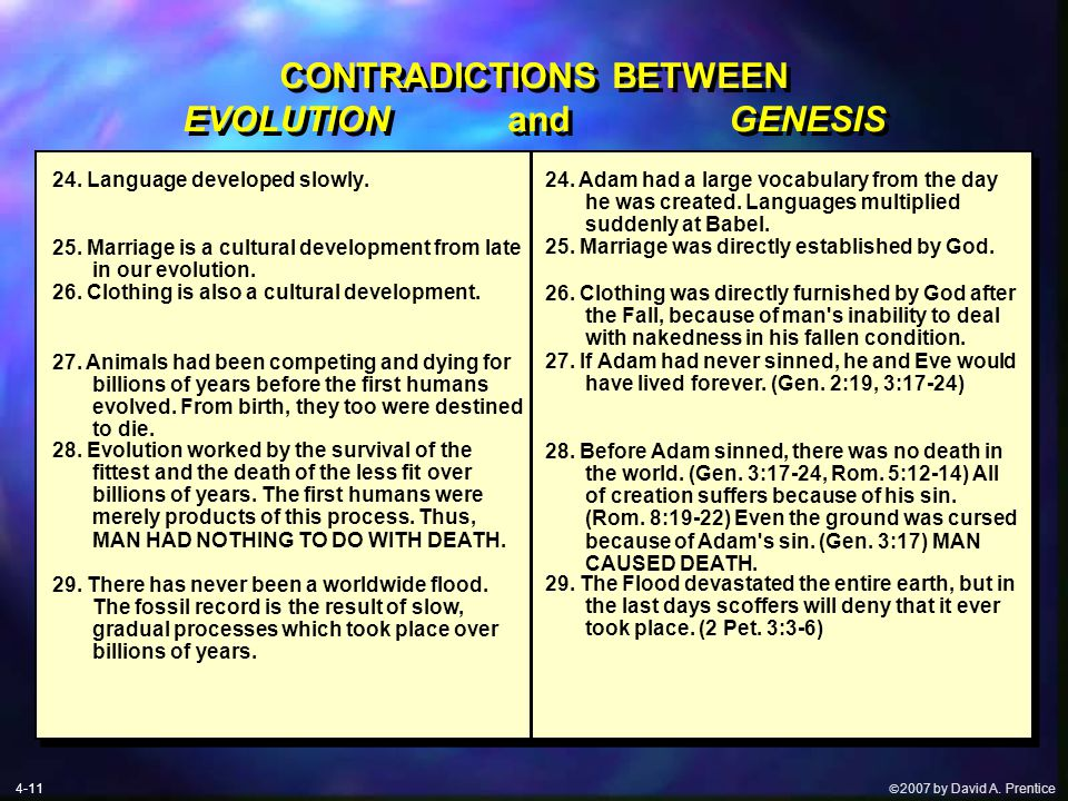  2007 by David A. Prentice CONTRADICTIONS BETWEEN EVOLUTION and GENESIS 24.