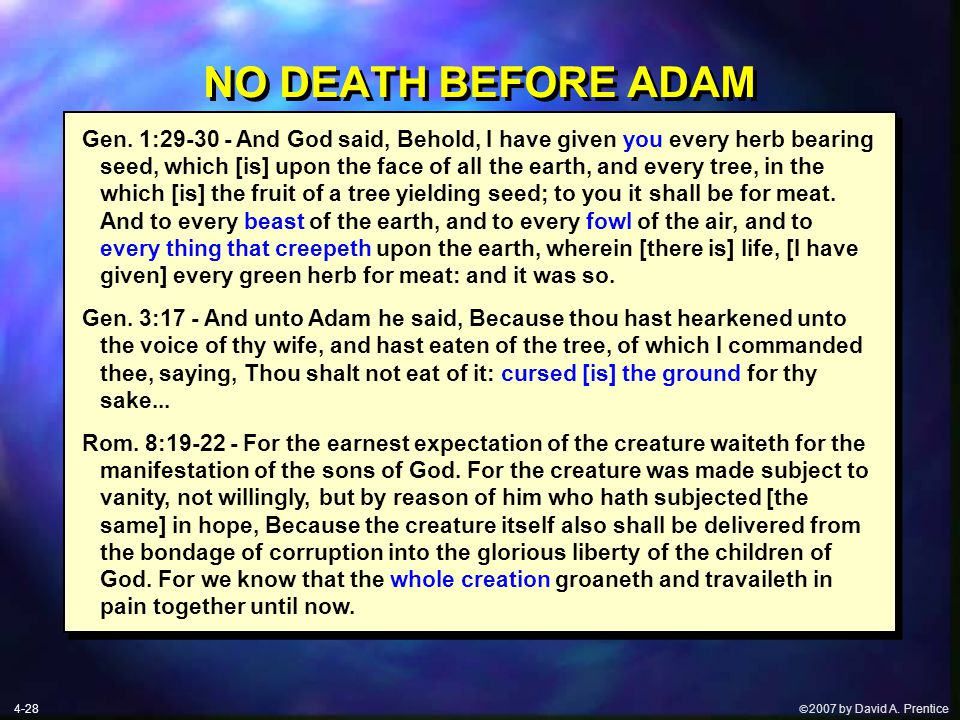  2007 by David A. Prentice NO DEATH BEFORE ADAM 4-28 Gen.