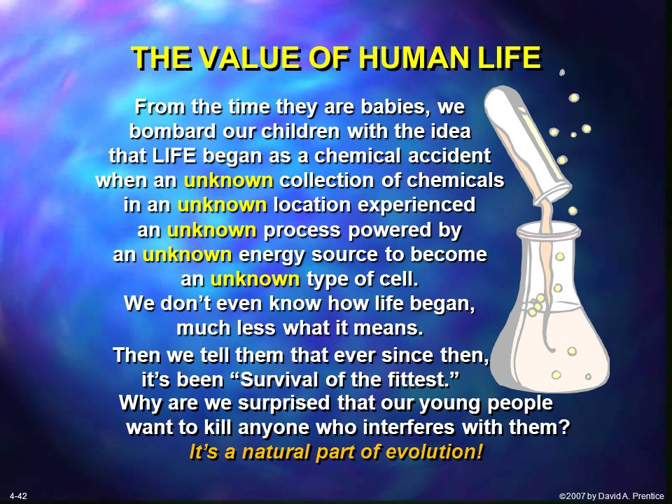 " 2007 by David A. Prentice THE VALUE OF HUMAN LIFE Then we tell them that ever since then, it's been ""Survival of the fittest."" Why are we surprised"