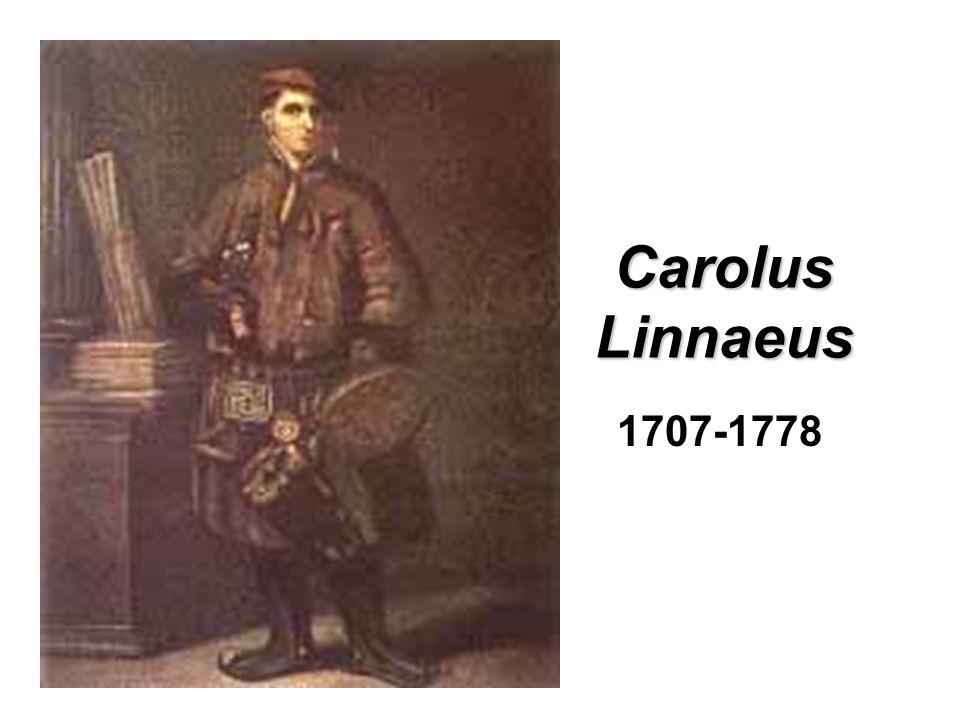 Carolus Linnaeus 1707-1778