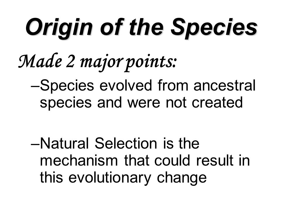 Origin of the Species Made 2 major points: –Species evolved from ancestral species and were not created –Natural Selection is the mechanism that could result in this evolutionary change