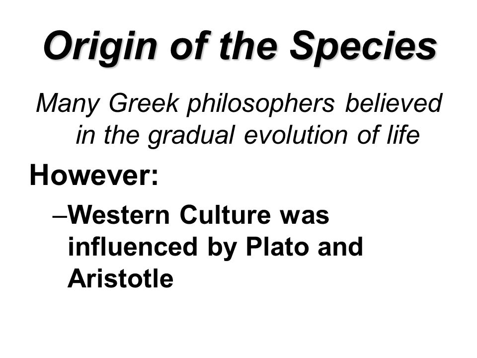 Origin of the Species Many Greek philosophers believed in the gradual evolution of life However: –Western Culture was influenced by Plato and Aristotle