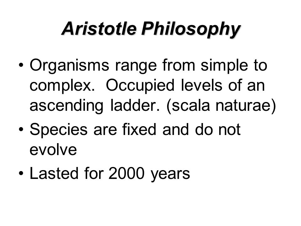 Aristotle Philosophy Organisms range from simple to complex.