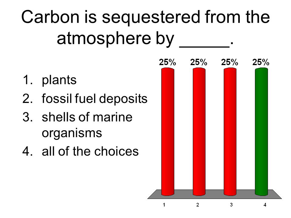 Carbon is sequestered from the atmosphere by _____.