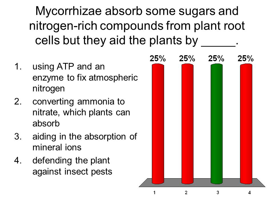 Mycorrhizae absorb some sugars and nitrogen-rich compounds from plant root cells but they aid the plants by _____.