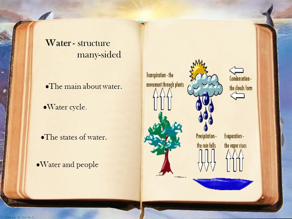  Water cycle. Water cycle.  The states of water.