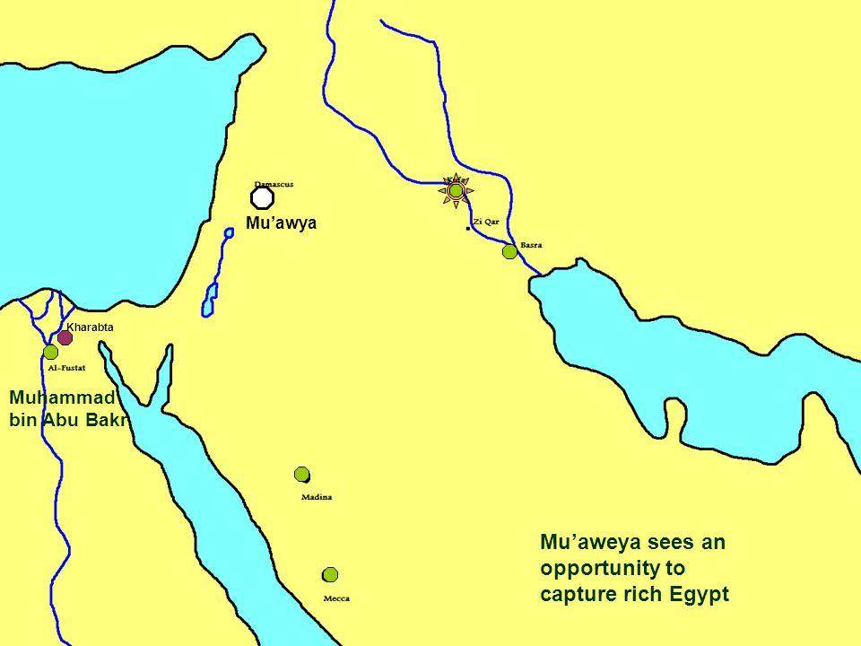 Mu'aweya sees an opportunity to capture rich Egypt Kharabta Muhammad bin Abu Bakr Mu'awya