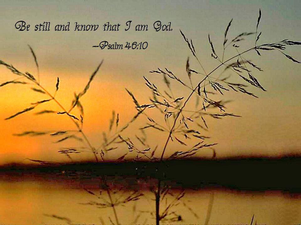 1 Chronicles 16 Blessing of God's Presence Blessing of God's Presence Pg 373 In Church Bibles