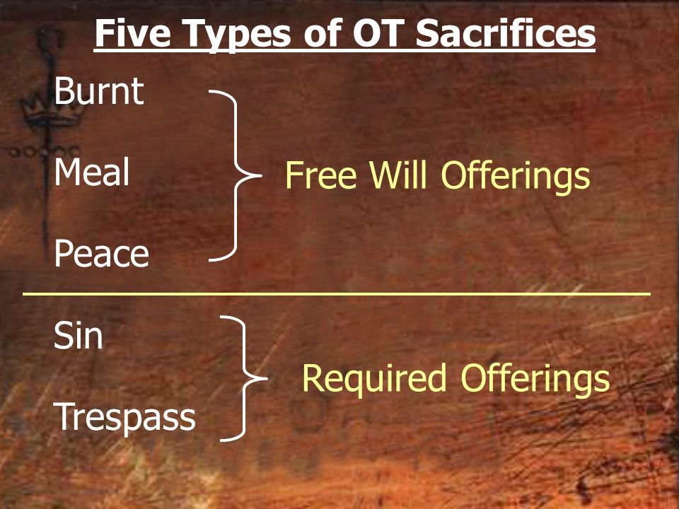 Burnt Meal Peace Sin Trespass Required Offerings Free Will Offerings Five Types of OT Sacrifices