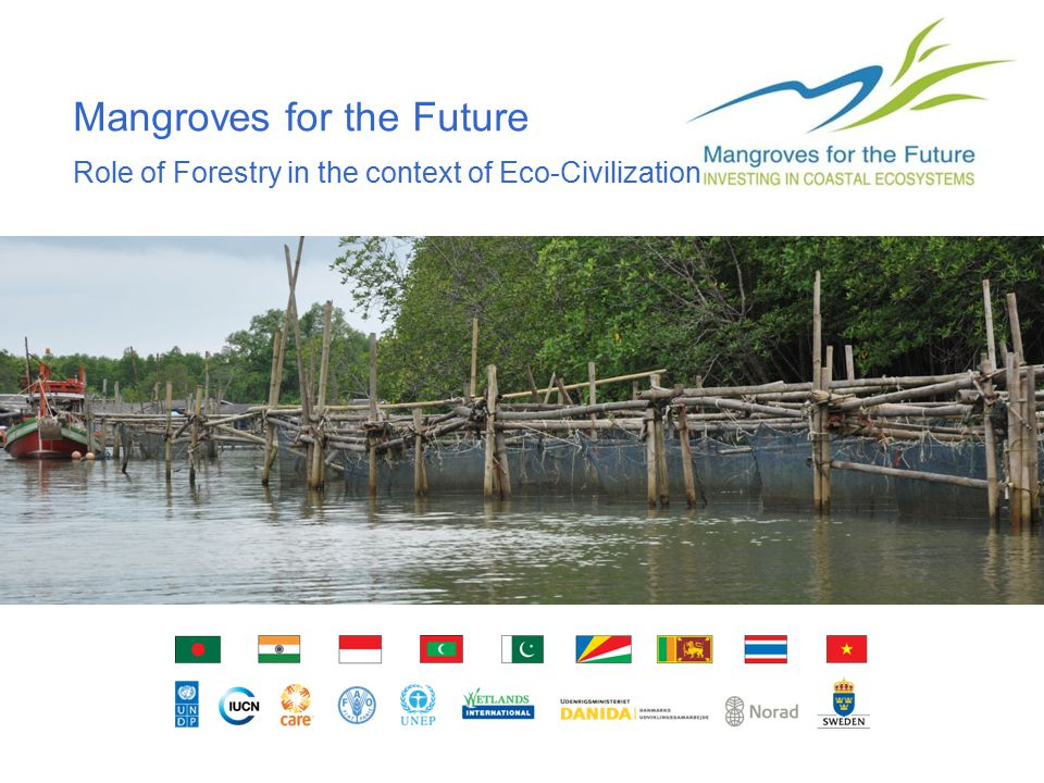 Mapping and natural resources governance in small island communities ICFRE DG's Visitto IUCN ARO, 1 February 2012 Mangroves for the Future Role of Forestry in the context of Eco-Civilization