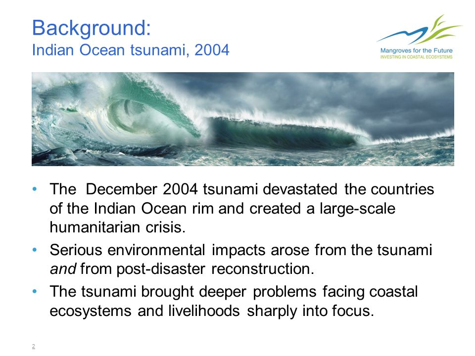 2 Background: Indian Ocean tsunami, 2004 The December 2004 tsunami devastated the countries of the Indian Ocean rim and created a large-scale humanitarian crisis.