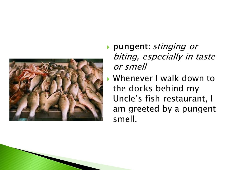  pungent: stinging or biting, especially in taste or smell  Whenever I walk down to the docks behind my Uncle's fish restaurant, I am greeted by a pungent smell.