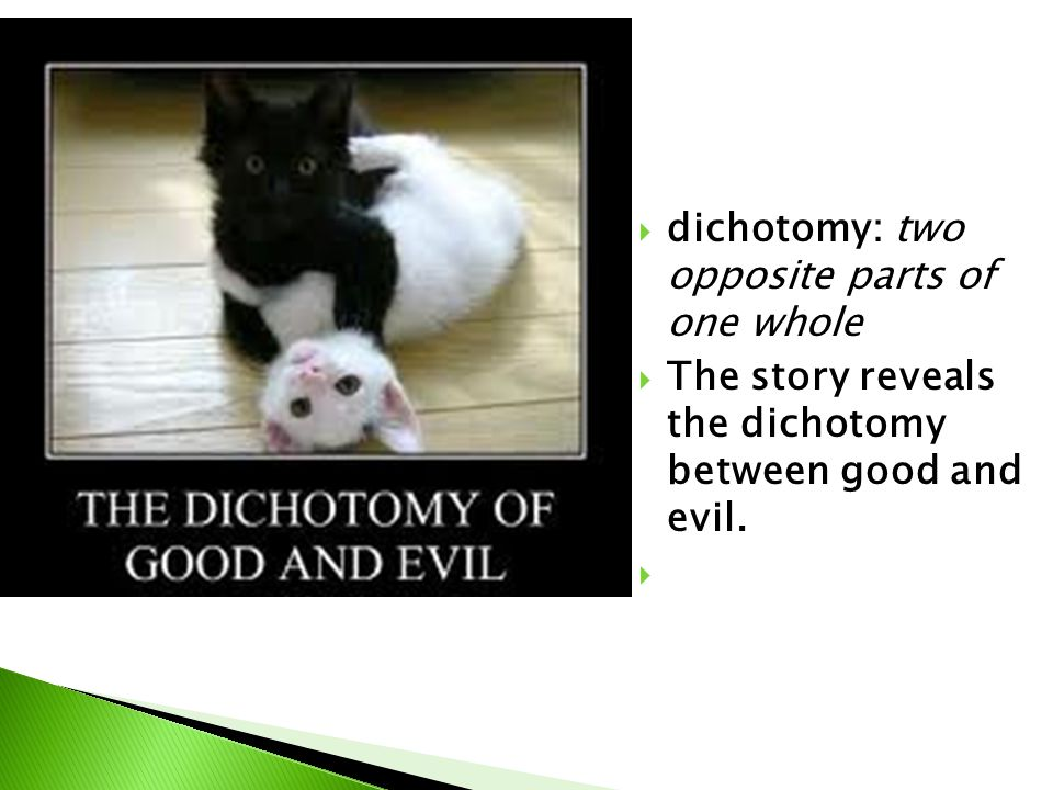  dichotomy: two opposite parts of one whole  The story reveals the dichotomy between good and evil.