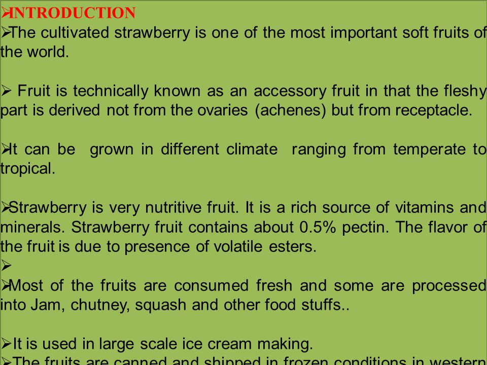  INTRODUCTION  The cultivated strawberry is one of the most important soft fruits of the world.  Fruit is technically known as an accessory fruit i