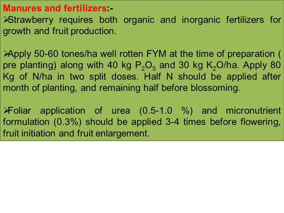 Manures and fertilizers:-  Strawberry requires both organic and inorganic fertilizers for growth and fruit production.