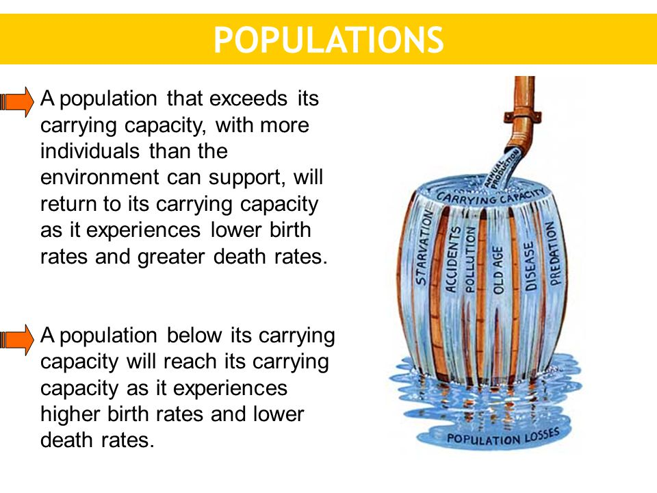 POPULATIONS A population that exceeds its carrying capacity, with more individuals than the environment can support, will return to its carrying capacity as it experiences lower birth rates and greater death rates.